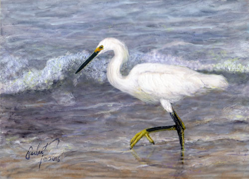"""Snowy Egret in the Summer Surf"" © Peter R. Gerbert"