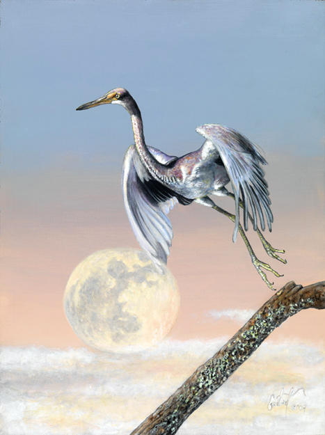 """The Bird Jumped Over the Moon"" © 2009 Peter R. Gerbert"