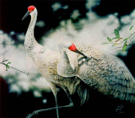 """In the Presence of Sandhill Cranes"" © 2007 Peter R. Gerbert"