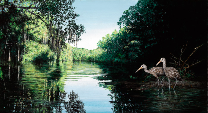 """The Black Edge -Limpkins on the Withlacoochee River"" © Peter R. Gerbert"
